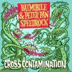 Cross Contamination - Cover