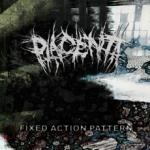 Fixed Action Pattern - Cover