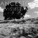 Invisible White - Cover
