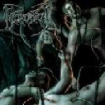 Recounts Of Disembodiment  - Cover