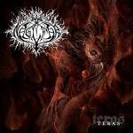 Teras - Cover