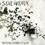 Cover - Natural Born Chaos