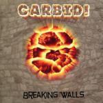 Breaking Walls - Cover
