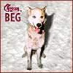 Cheesy Beg - Cover