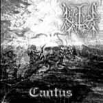Cantus - Cover