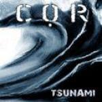 Tsunami - Cover