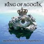 Membranophonic Experience - Cover