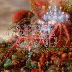 Spidergawd - IV