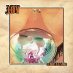 Joy - Ride Along
