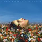 The Pineapple Thief Magnolia